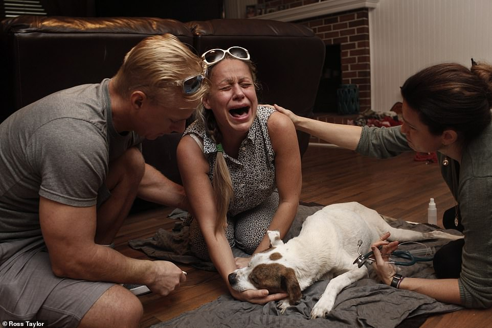 Olesya Lykovi cries out in anguish, moments after the death of her dog, Sam. Moments before, she looked at Dr Dani McVety (right) and asked: 'Is he gone?', Dani nodded and said: 'He has his wings now'